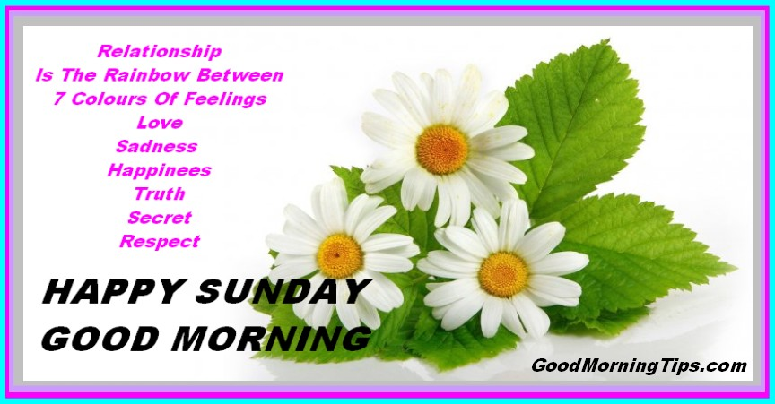 Good Morning Wishes On Sunday Pictures Images Page 10