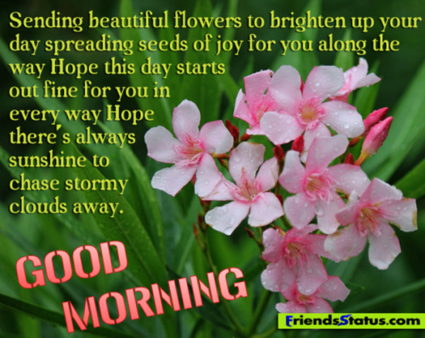 Sending Beautiful Flowers To Brighten Up – Good Morning