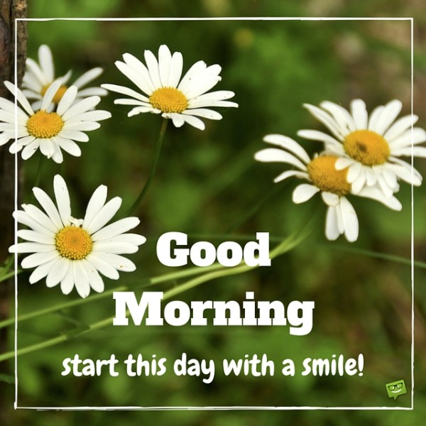 Start Thid Day With A Smile - Good Morning-wg017186