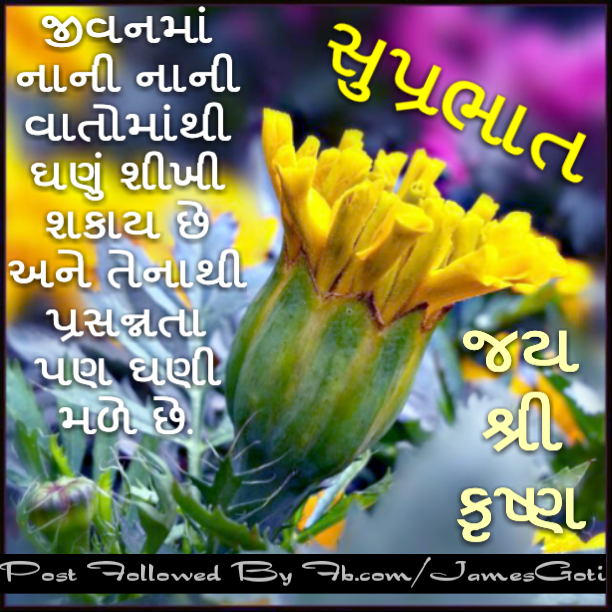 Good Morning Wishes In Gujarati Pictures Images Page 3