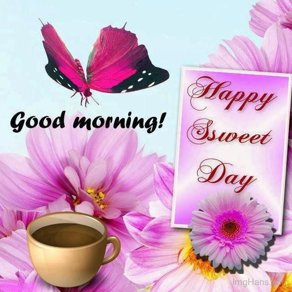 Sweet Day-wg01536