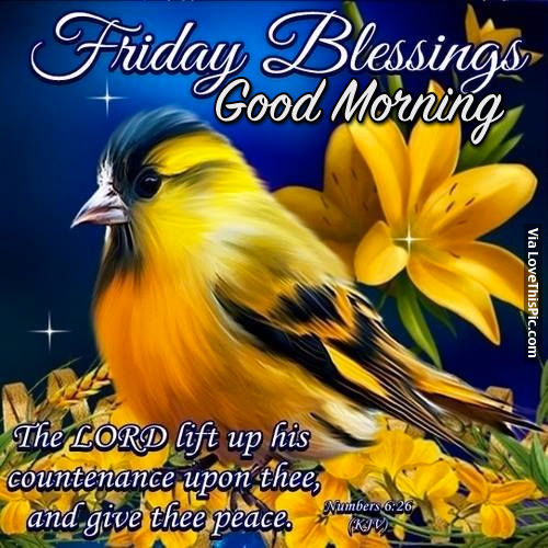 The Lord Lift Up His Countenance - Good Morning-wg01790