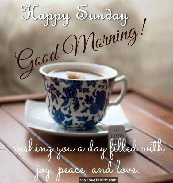 Good Morning Wishes On Sunday Pictures Images Page 9