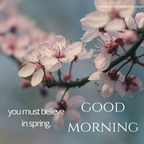You Must Believe In Spring Good Morning