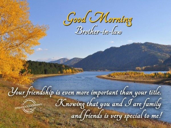 Your Friendship Is Special To Me Good Morning-wb558