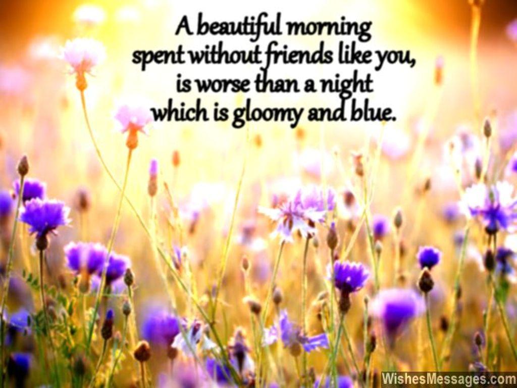 A Beautiful Morning Good Morning
