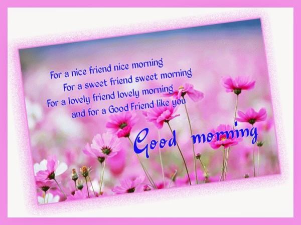 A Lovely Friend A Lovely Morning