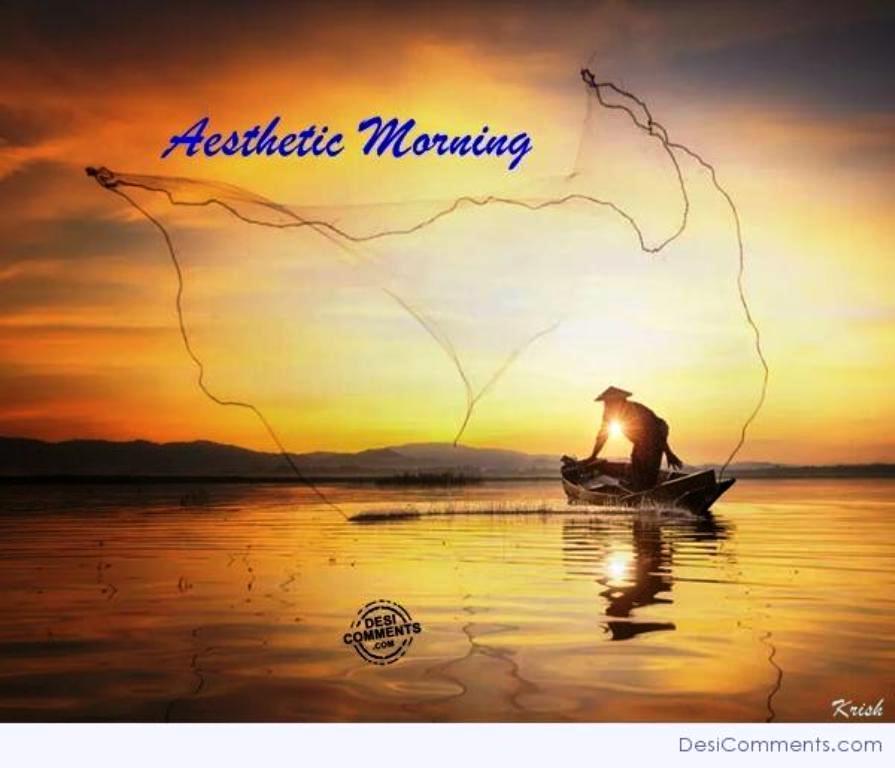 Aesthetic Morning