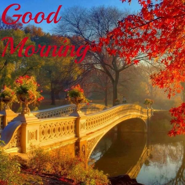 Beautiful Morning-wg16042