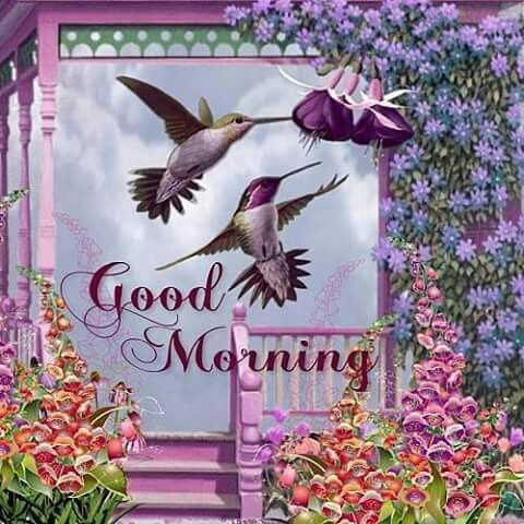 Good Morning Wishes With Birds Pictures Images Page 10