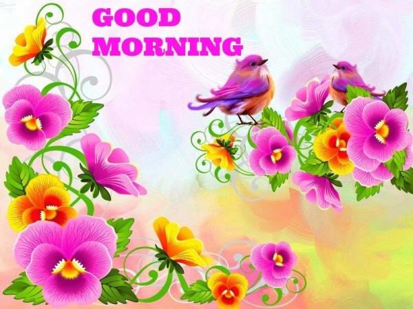 Birds - Good Morning-wg16056