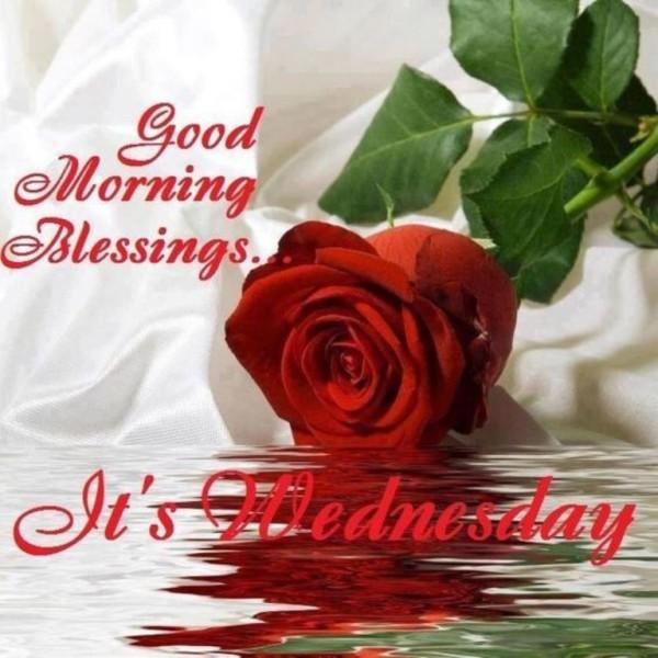Blessing -  Good Morning-wg034082