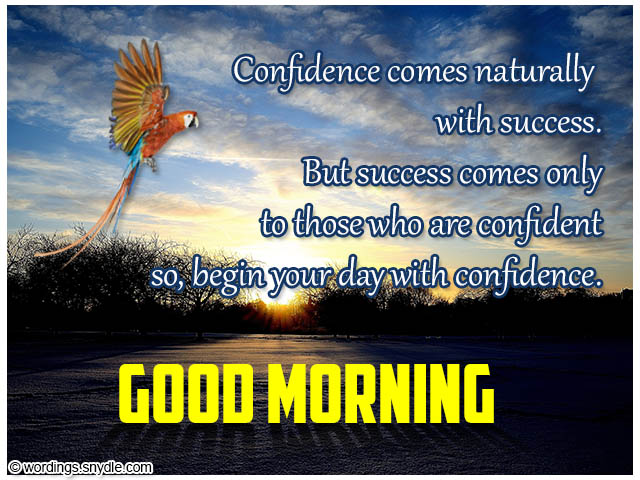 Confidence Comes Naturally Wg140106