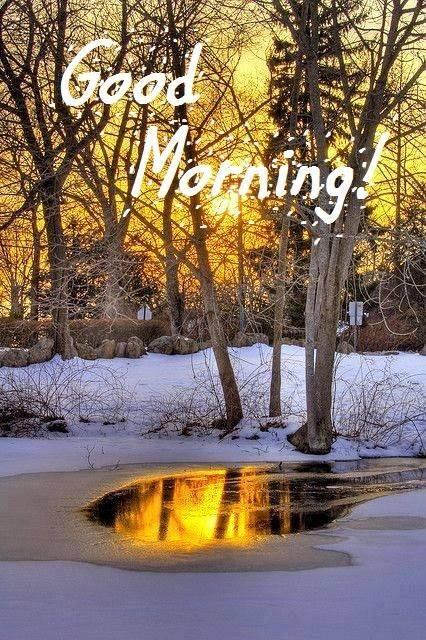 Cool Morning-wg16068