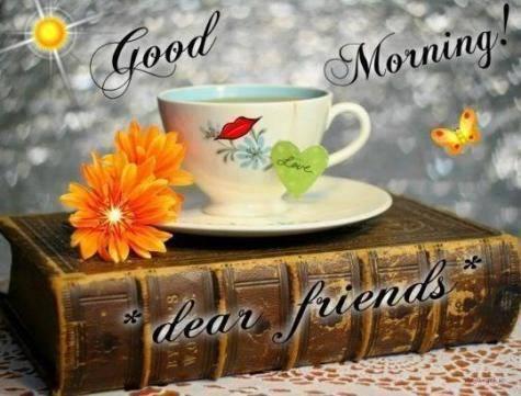 Dear Firiend - Good Morning-wg16074