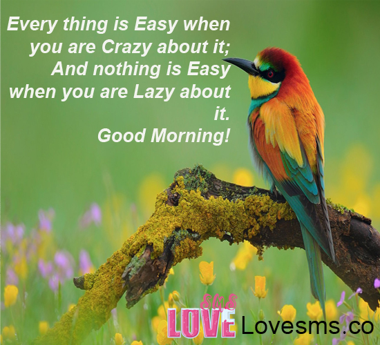 Everything Is Easy   Good Morning Wg16102