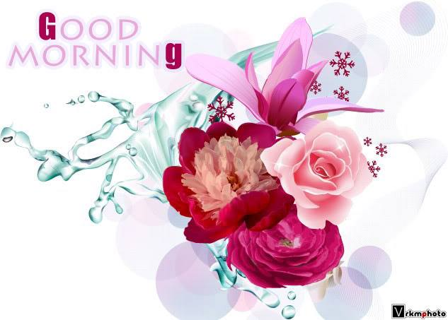Lovesove Good Morning Wallpaper : Good Morning Wishes With Flowers Pictures, Images - Page 10