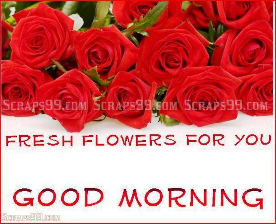 good morning wishes with flowers pictures images page 30