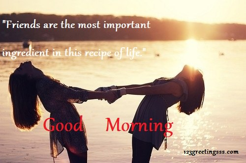 Friends Are The Most Important Ingredient-wg16116
