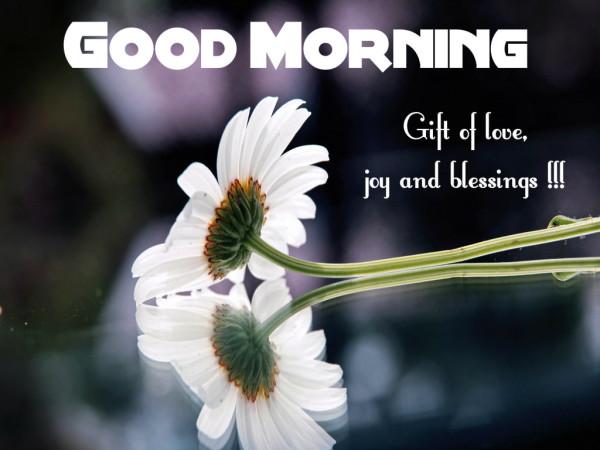 Gift Of Love - Good Morning-wg16123