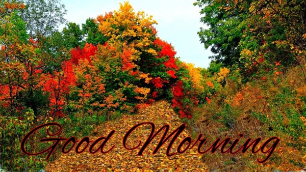God Morning - Natural Beauty-wg16131