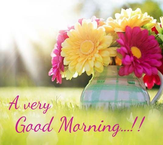 Good Morning Wishes With Flowers Pictures, Images - Page 37