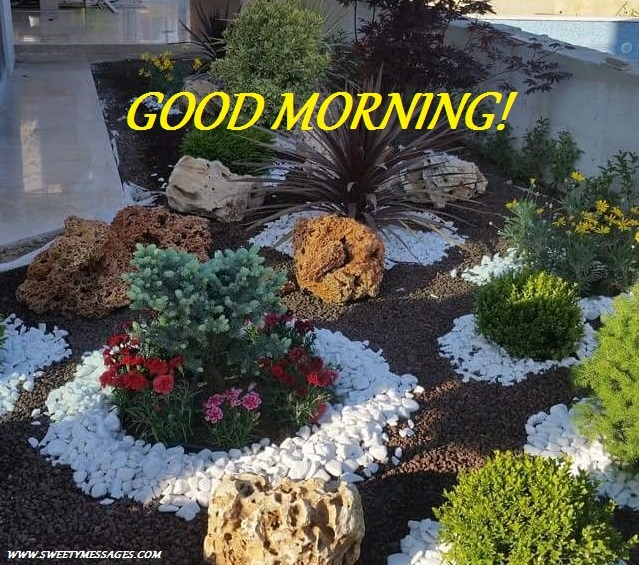 Good Morning Garden Image