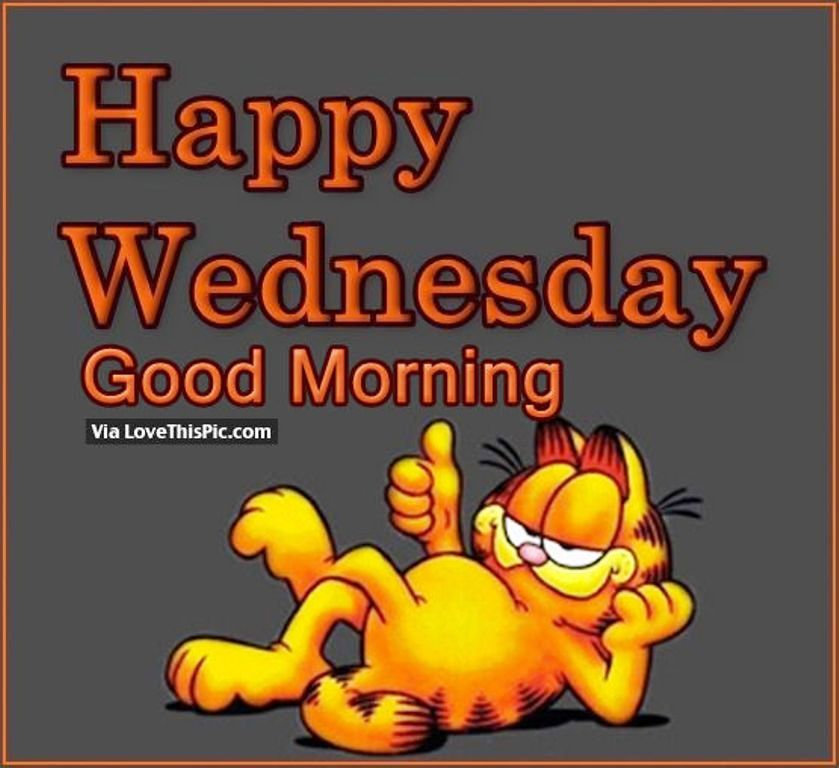 Good Morning Wishes On Wednesday Pictures Images Page 4