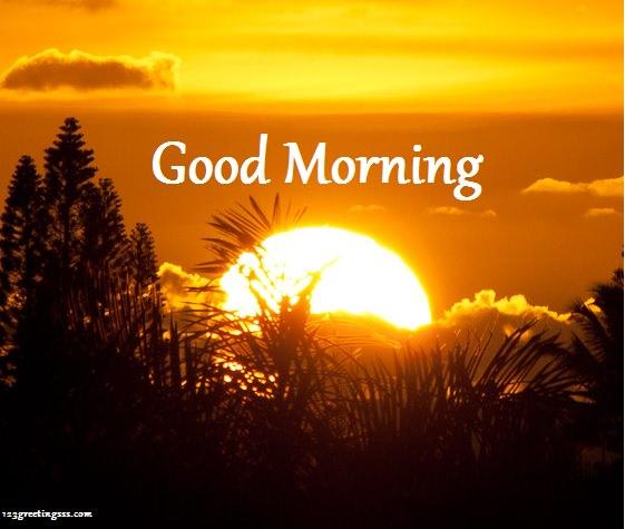 Good Morning - Image !-wg16187