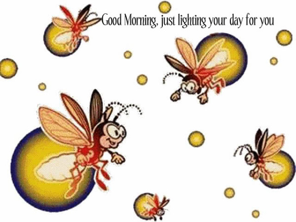 Good Morning - Just Lighting Your Day-wg0180446