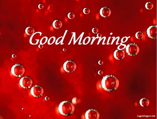 Good Morning - Little Bubble Image-wg16198