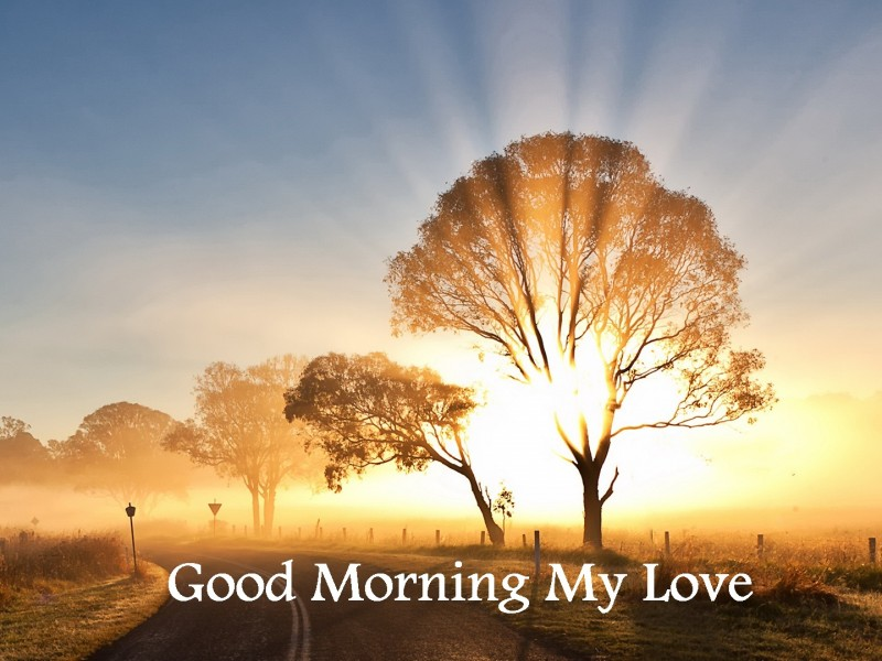 Good Morning Love New : Good morning wishes for love pictures images