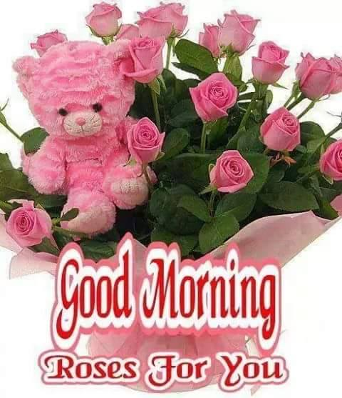 Good Morning - Roses For You-wg16223