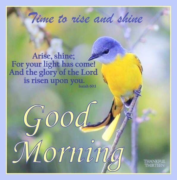 Good Morning Wishes With Birds Pictures Images Page 8