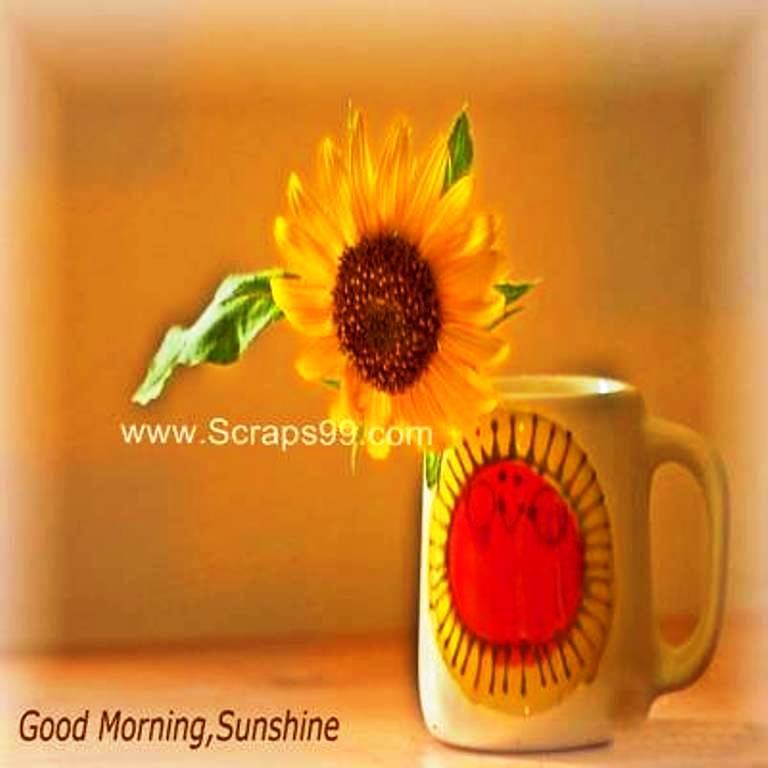 Good Morning Sunshine You Are My Sunshine : Good morning my sunshine