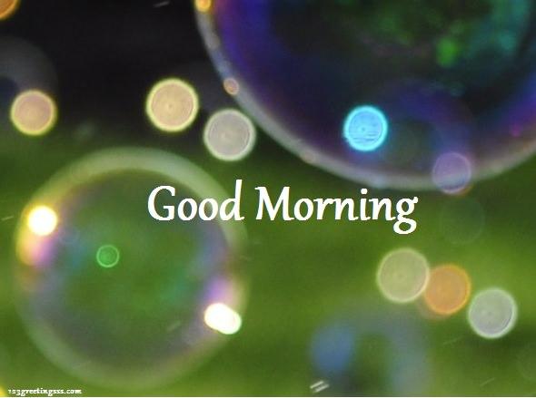 Good Morning To Everyone-wg16283