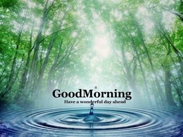 Good Morning - Water-wg16235