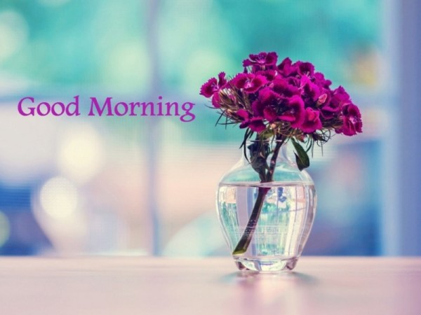Good Morning With Lovely Flower Vase