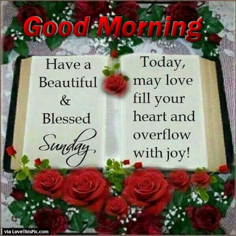Good Morning Everyone Sunday : Good morning wishes on sunday pictures images page