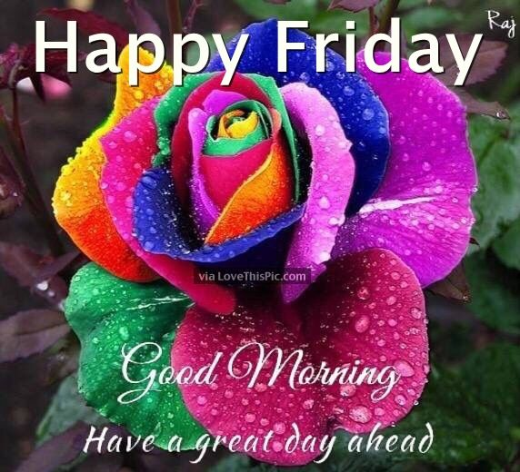 Image result for happy friday good morning wishes