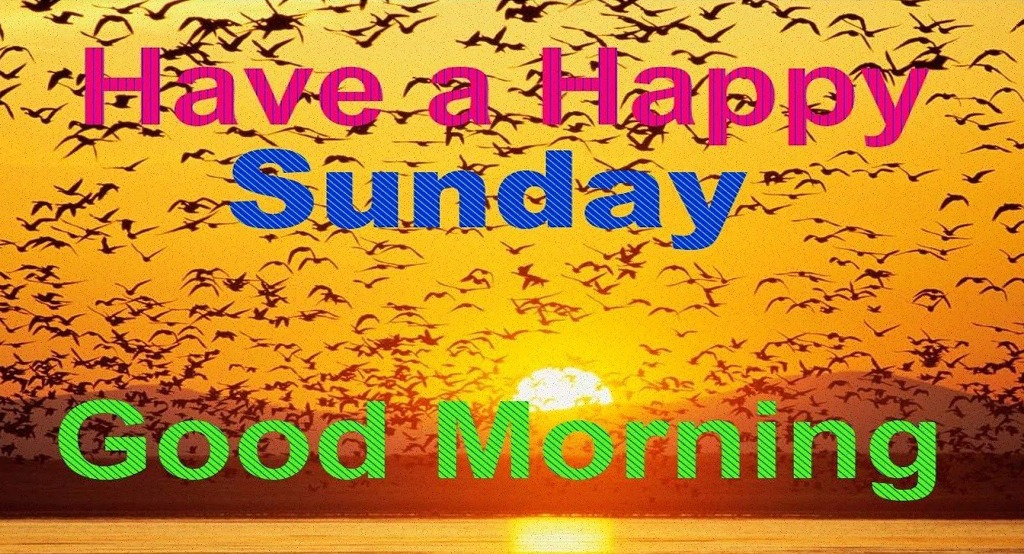Good Morning Wishes On Sunday Pictures Images Page 4