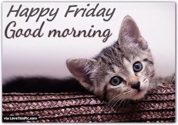 Happy Friday - Good Morning-wg11398