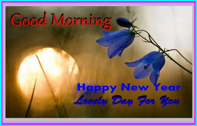 first good morning of new year pictures images page