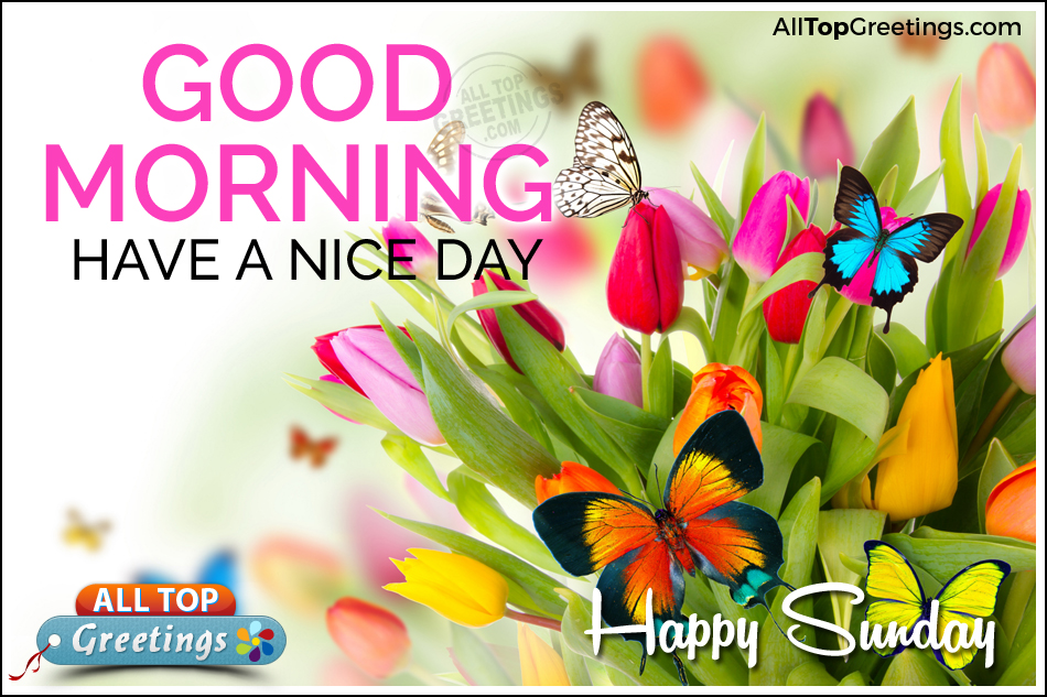 good morning wishes on sunday pictures images page 3