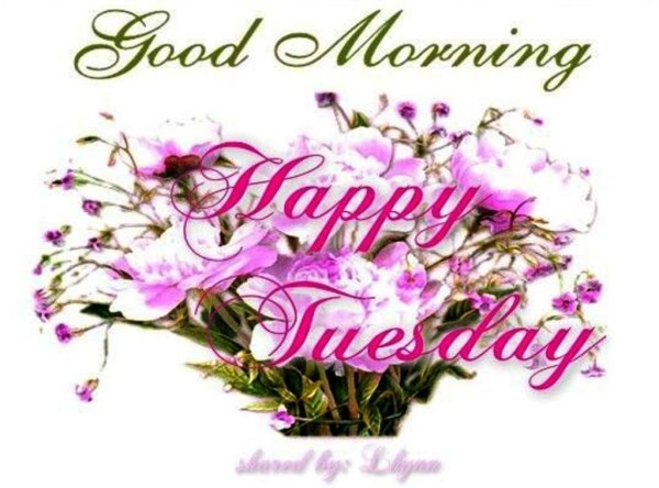 Happy Tuesday - Good Morning-wg023202