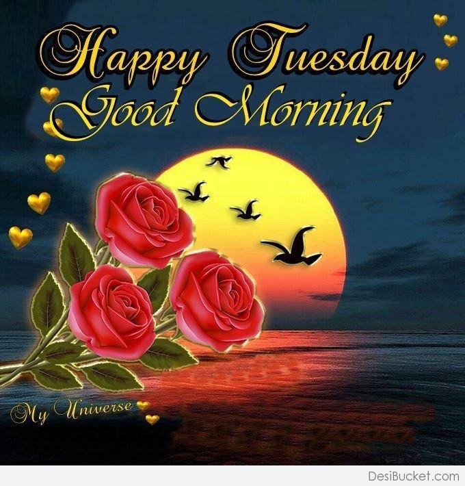 Good Morning Tuesday Messages : Good morning wishes on tuesday pictures images