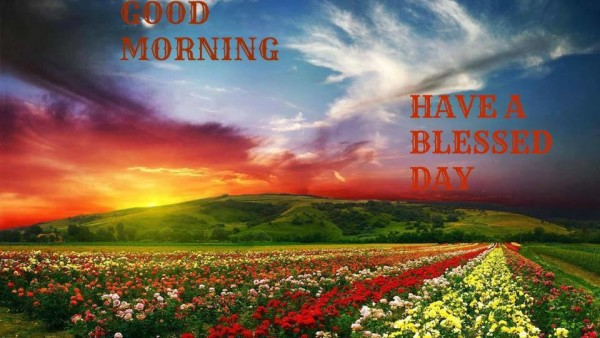 Have A Blessed Day – Morning