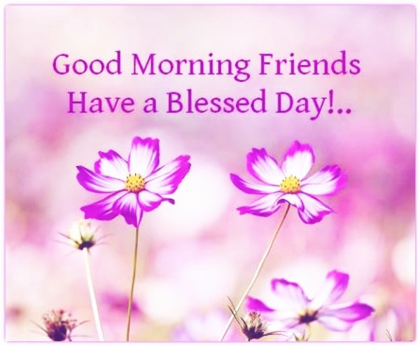 Have A Blessed Day - Morning Friends-wg16342