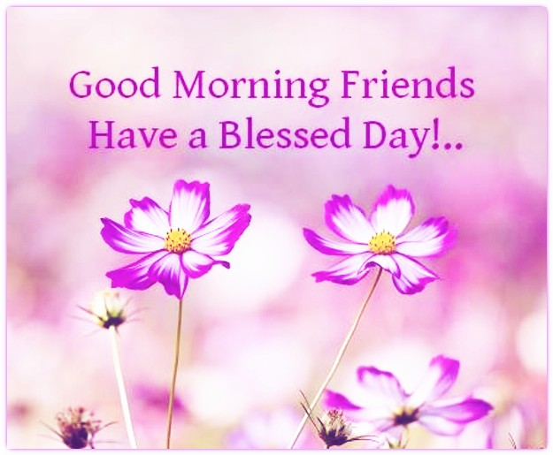 Good Morning Friends Have A Nice Day Images : Good morning wishes for friend pictures images page