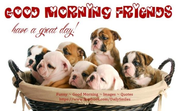Have A Great Day Friends - Dogs-wg16360